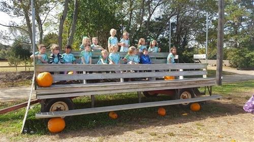 Primary Students Visits Pumpkin Patch